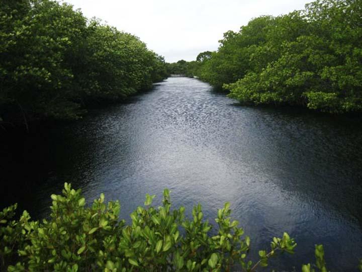 lagoon3