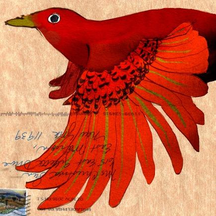 birdonthewing